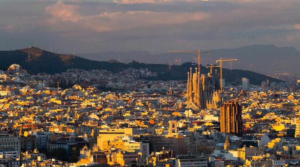 Sagrada Familia featuring a sunset, landscape views and a city