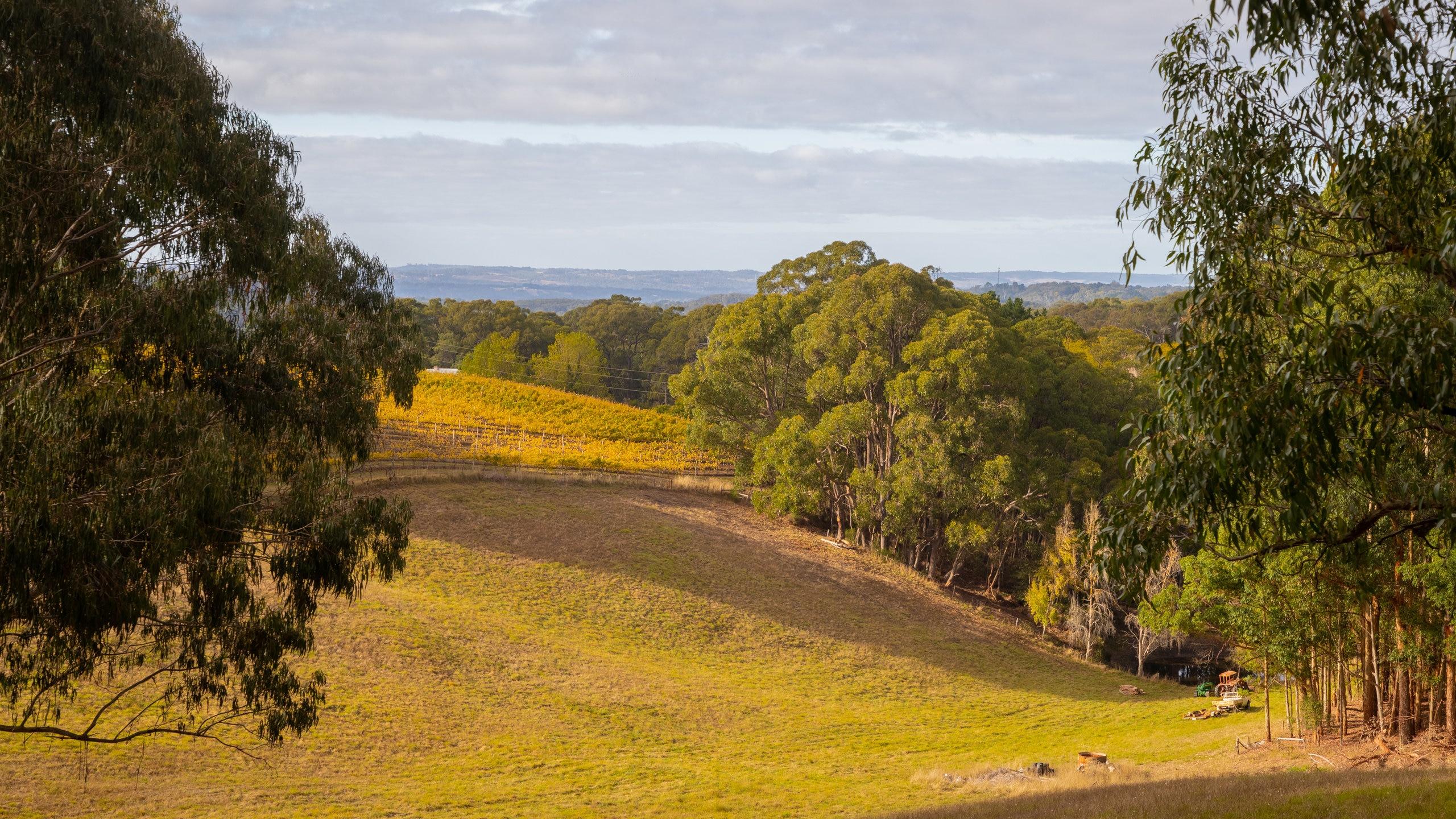 Crafers, Adelaide, South Australia, Australia