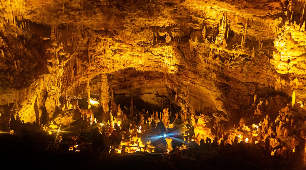 Natural Bridge Caverns which includes caves