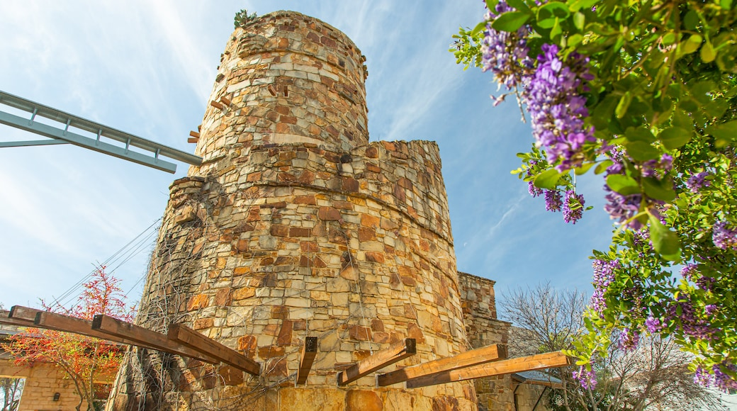Lady Bird Johnson Wildflower Center showing wildflowers and heritage elements