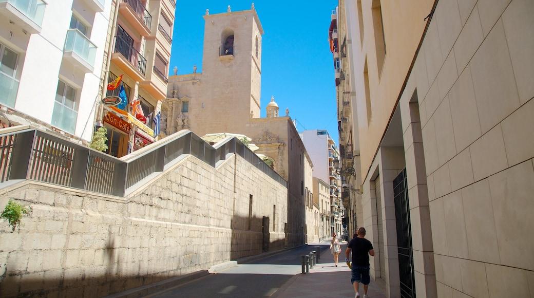 Basílica de Santa María bevat straten en een stad