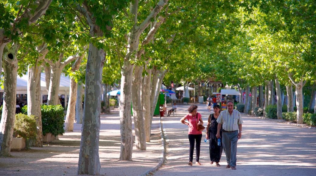 Casa de Campo das einen Park sowie kleine Menschengruppe