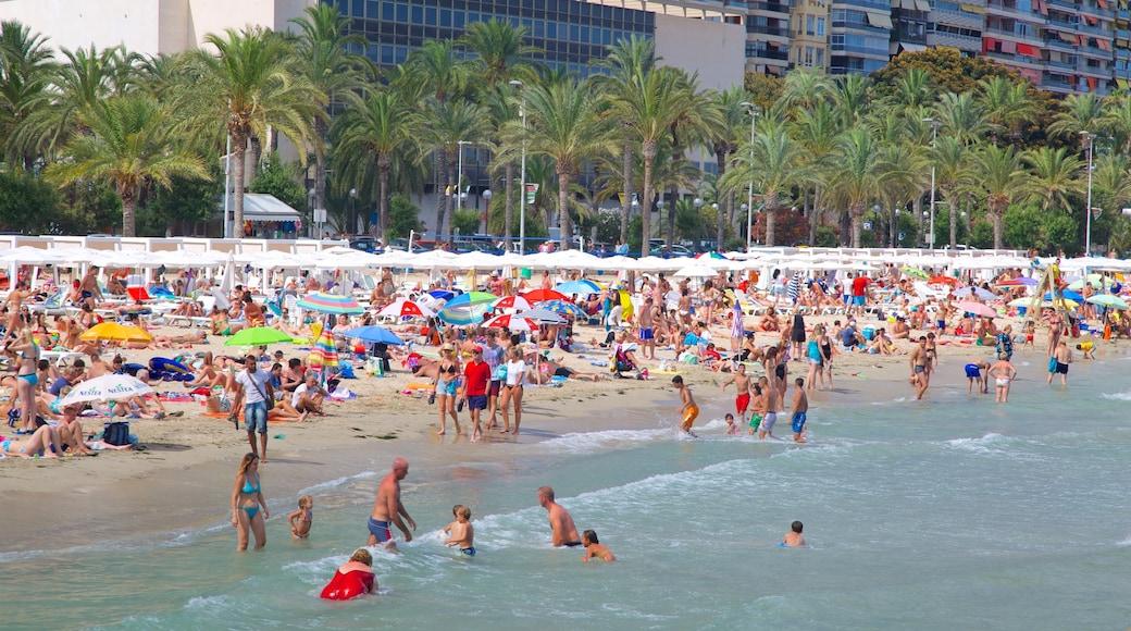 Playa de Postiguet que incluye una playa de arena, natación y escenas tropicales