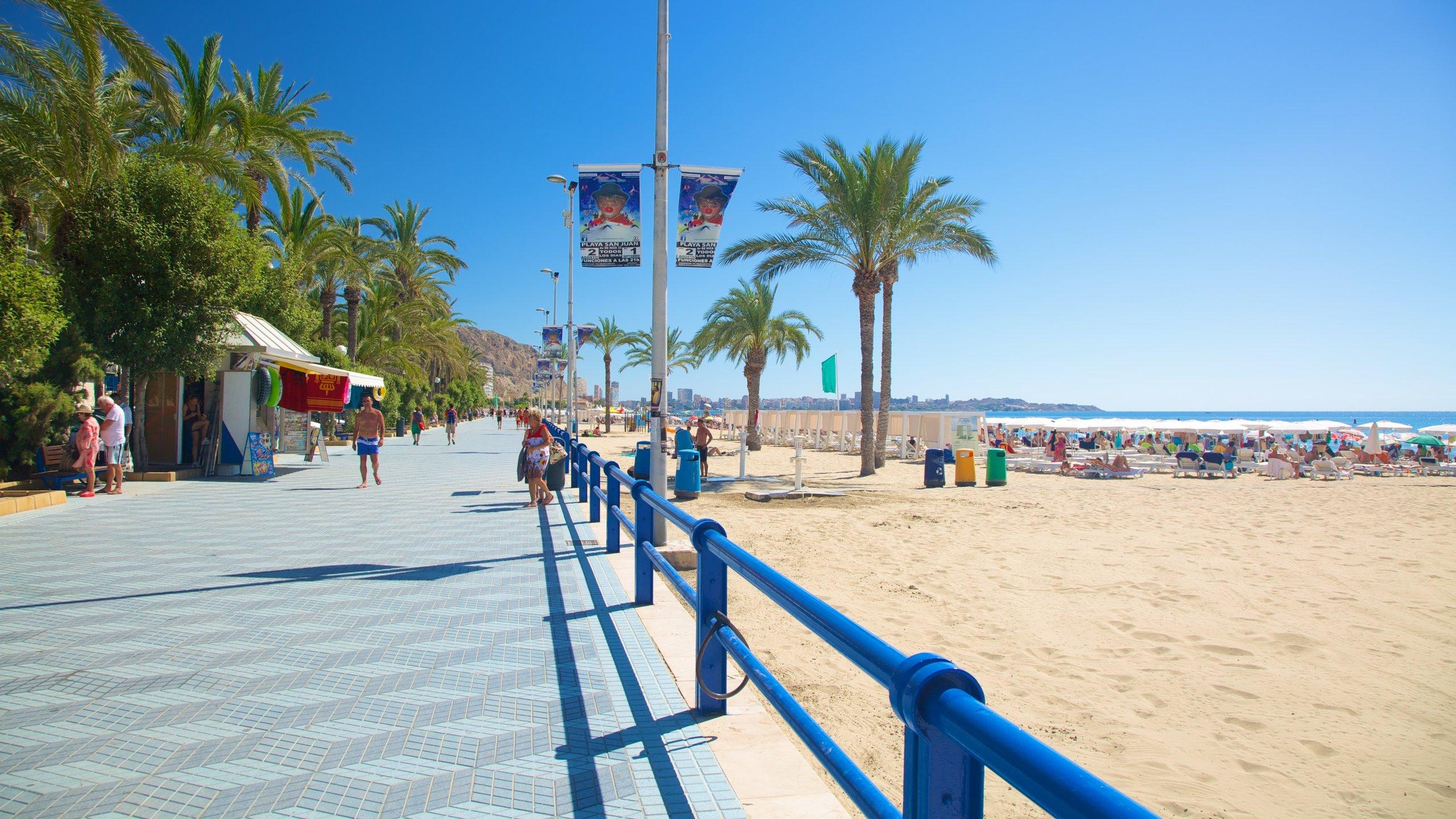 Ensanche Diputación, Alicante, Valencian Community, Spain