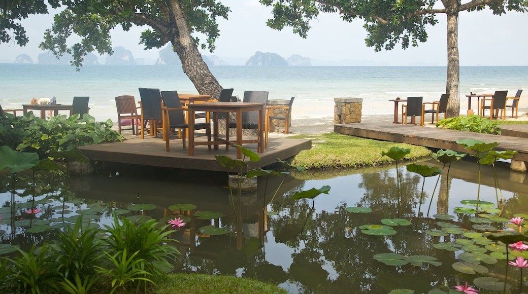 Ao Phra Nang Beach featuring outdoor eating, general coastal views and a pond