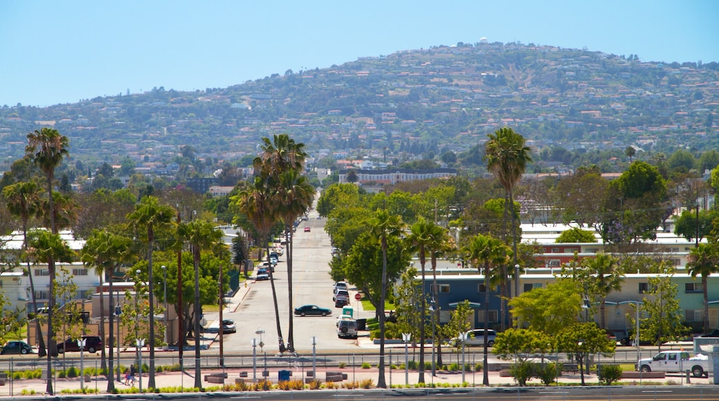 San Pedro featuring a city and street scenes