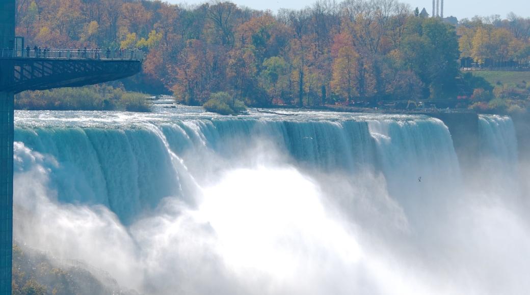 新娘面紗瀑布 设有 小瀑布, 秋天落葉 和 笨豬跳
