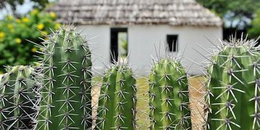 Curaçao bevat een huis en vredige uitzichten