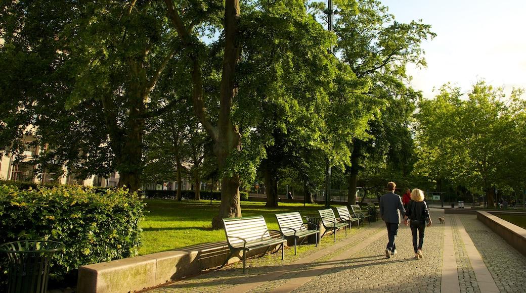 Gustav Adolfs torg som inkluderar en trädgård såväl som ett par