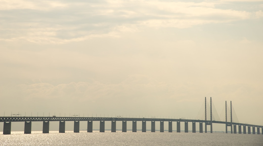 Oresund Bridge which includes general coastal views and a bridge