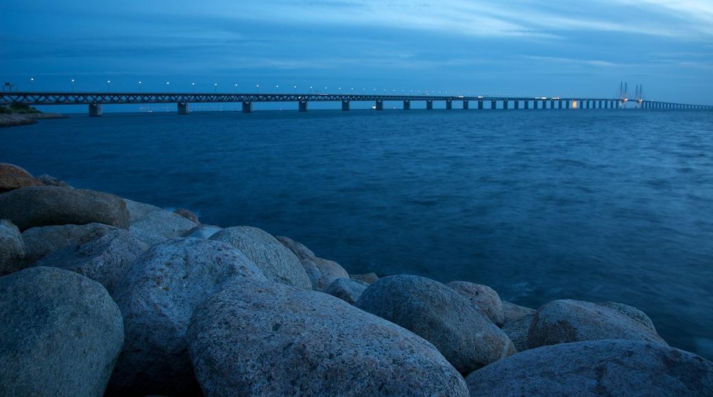 Öresundbrücke welches beinhaltet Brücke, schroffe Küste und bei Nacht