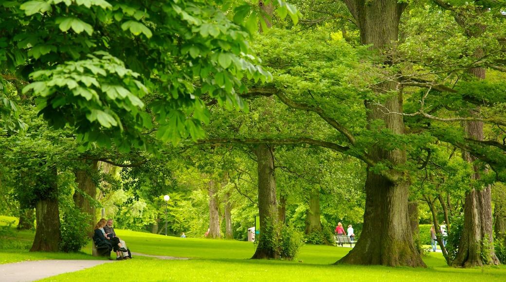 Slottsskogen johon kuuluu puisto