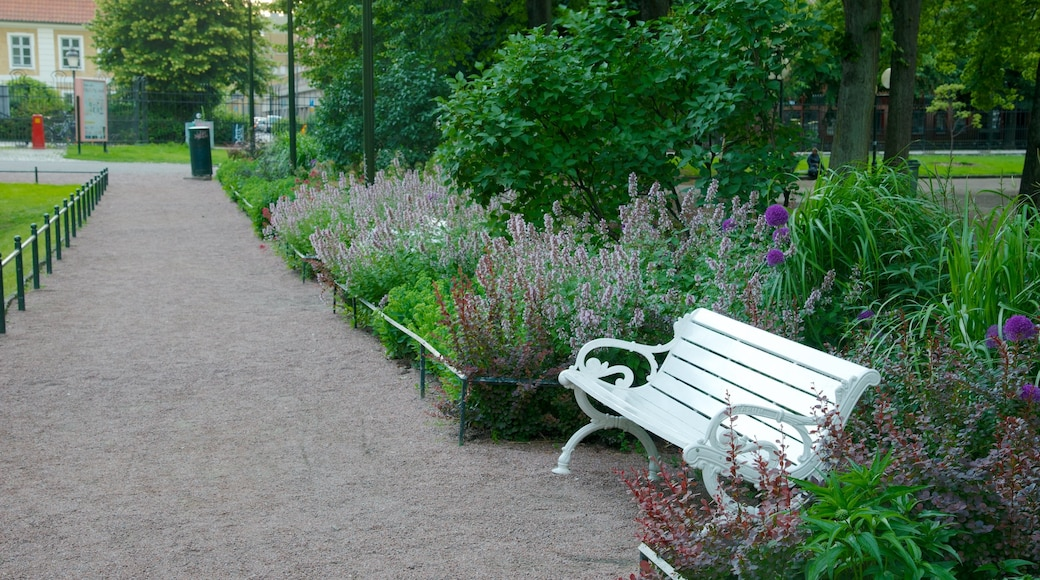 Mollevangen showing wildflowers and a park