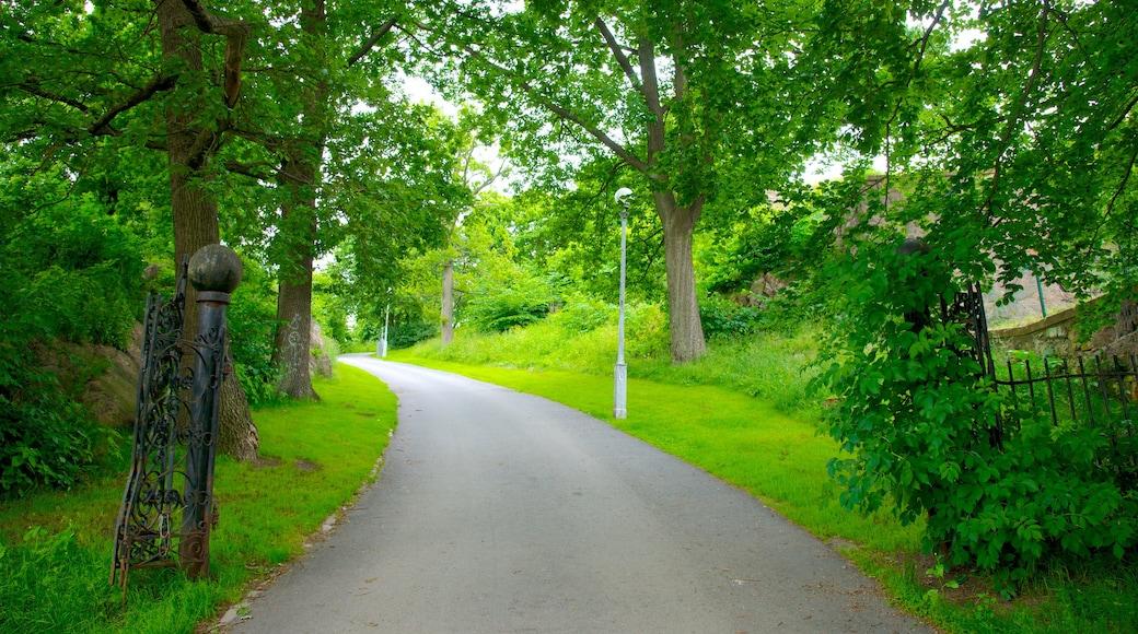 Skansen Kronan 设有 公園