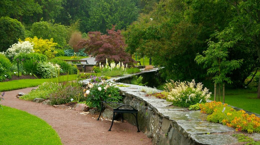 Botaniska trädgården presenterar en trädgård
