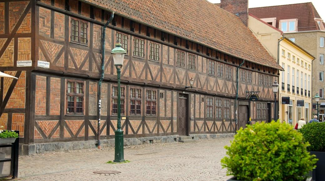 Lilla Torg presenterar en stad, gatuliv och historisk arkitektur