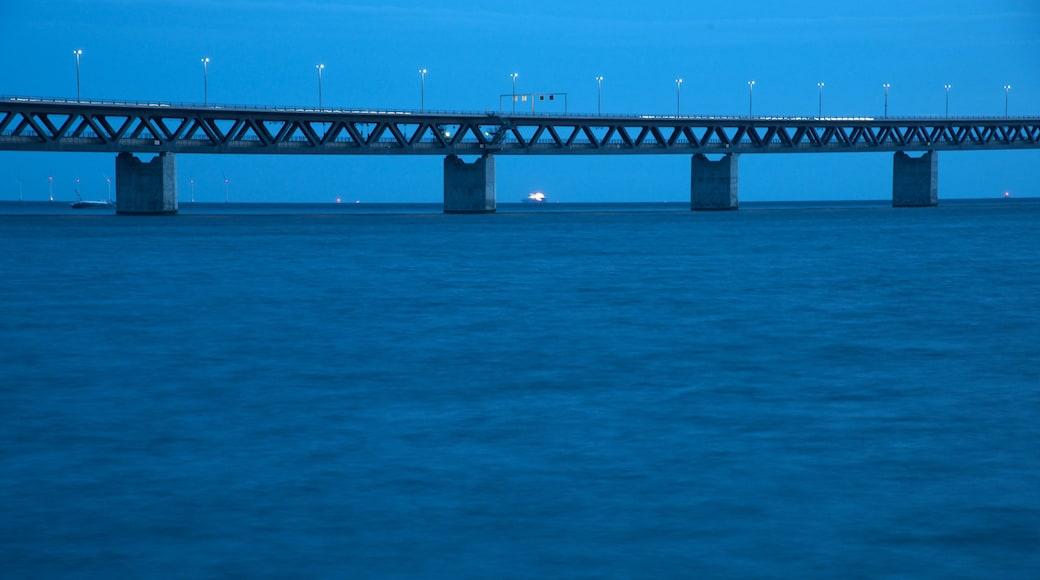 Puente de Oresund que incluye vistas de una costa, escenas nocturnas y un puente colgante o pasarela