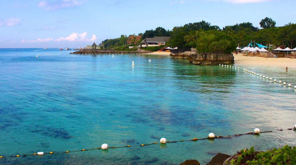 세부 을 특징 아열대 풍경, 해변 과 풍경