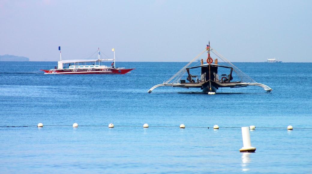 세부 을 특징 일반 해안 전경 과 보트 타기