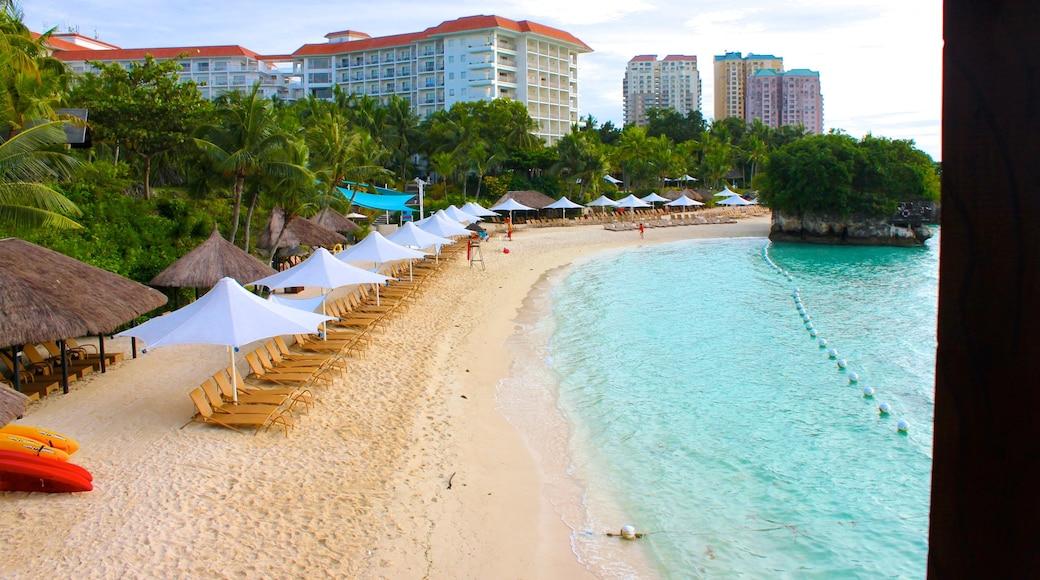 세부 을 보여주는 아열대 풍경, 럭셔리 호텔 또는 리조트 과 해변
