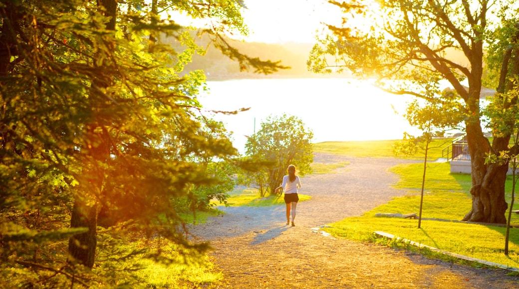 Point Pleasant Park welches beinhaltet Sonnenuntergang, Garten und Waldmotive