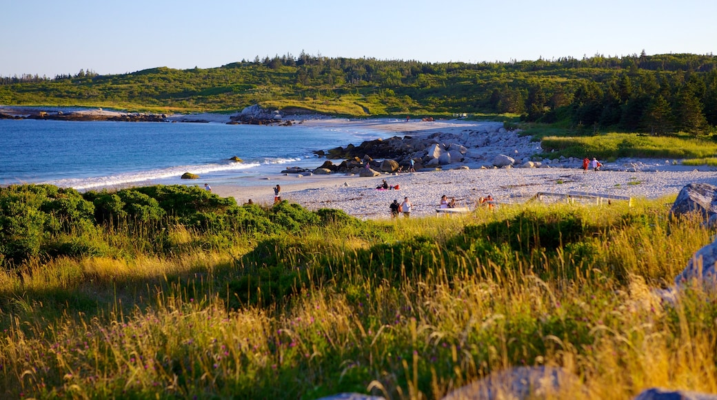 Crystal Crescent Beach which includes a sandy beach, landscape views and rugged coastline