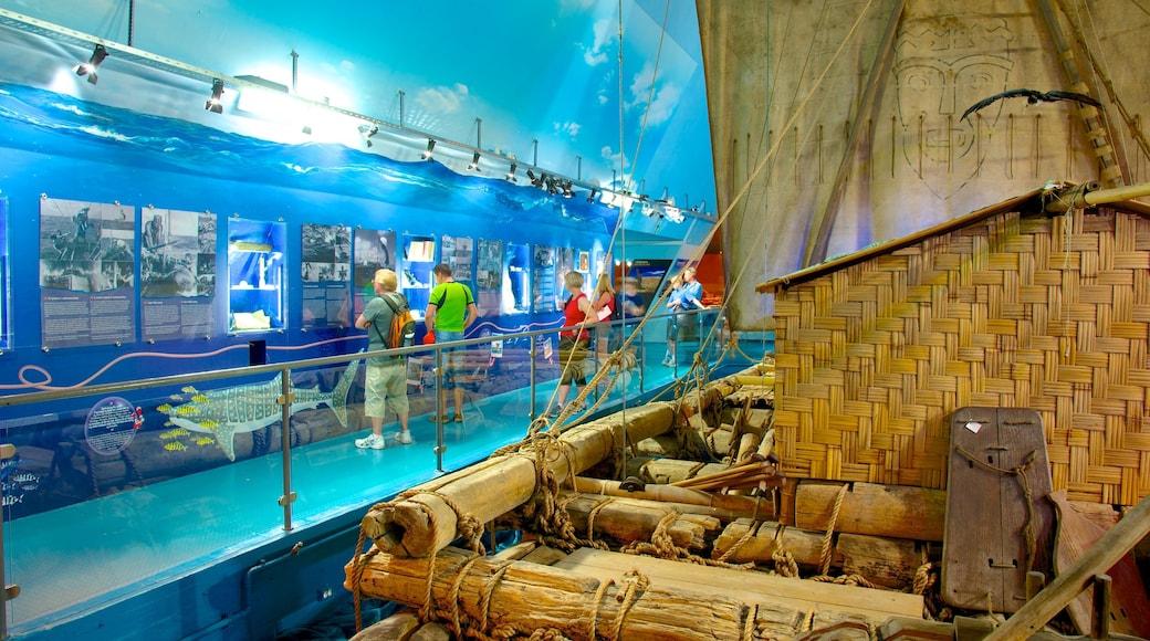 Kon Tiki-museet som visar interiörer