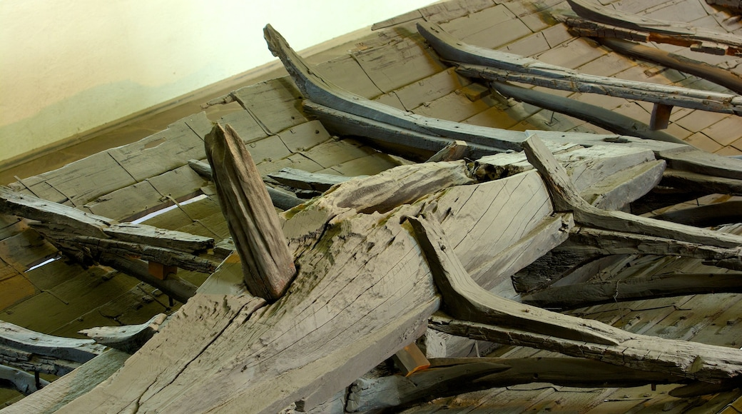 Viking Ship Museum which includes interior views