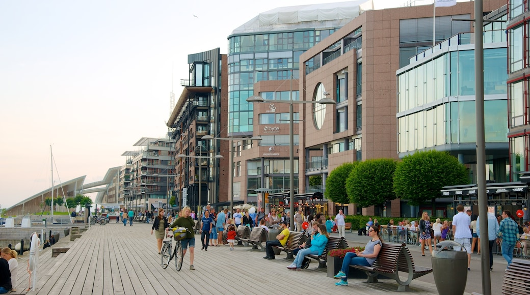 Aker Brygge which includes modern architecture and a coastal town as well as a large group of people