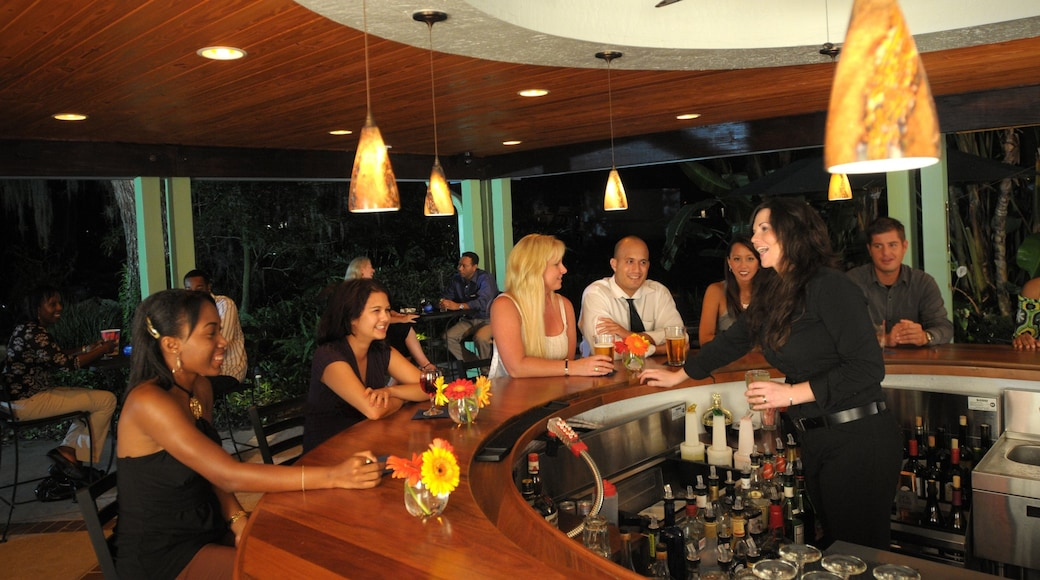 Orlando which includes a bar, theatre scenes and nightlife