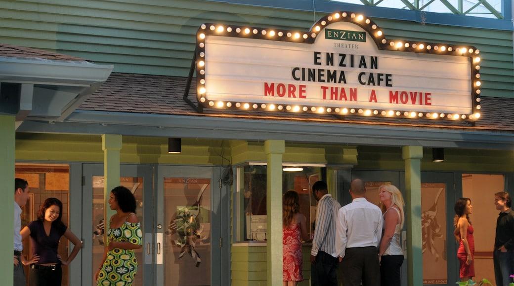Orlando featuring theatre scenes, signage and café scenes