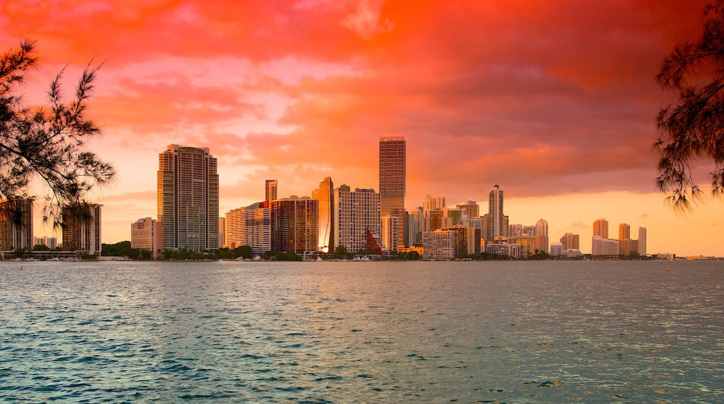 Miami featuring a city, a skyscraper and a sunset