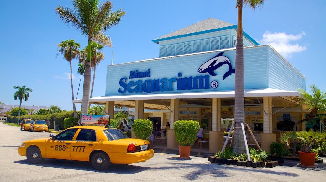 Miami Seaquarium das einen Meeresbewohner und Beschilderung