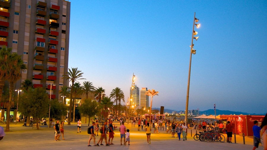 Barceloneta Beach featuring street scenes, night scenes and a city