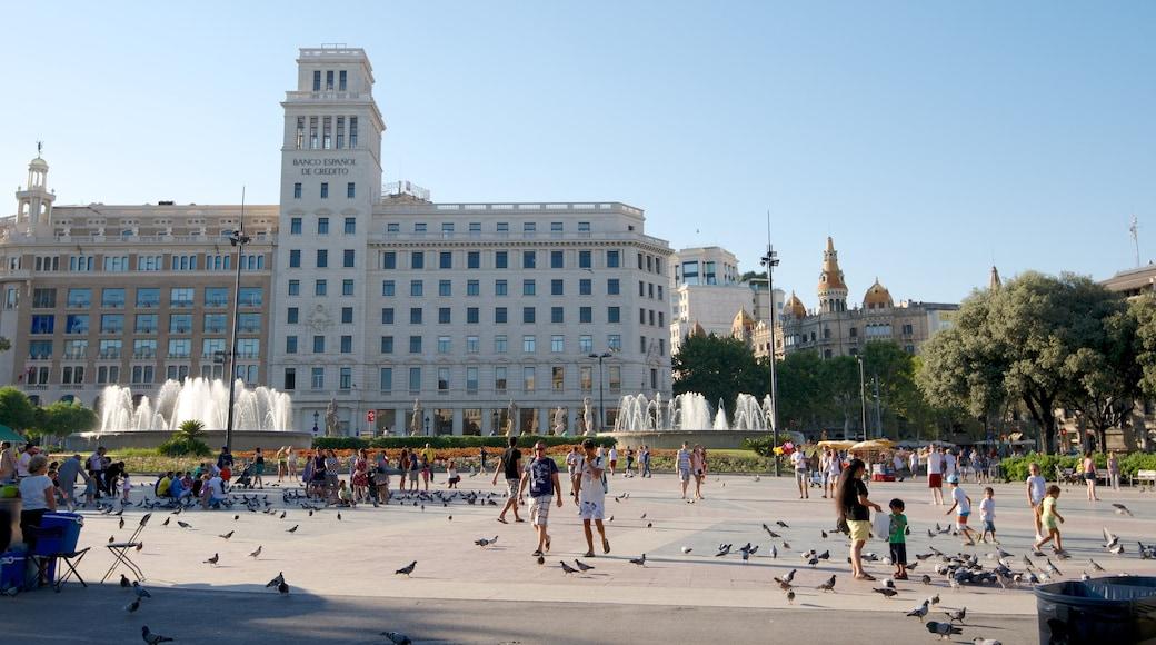 Barcelona toont een stad, een plein en vogels