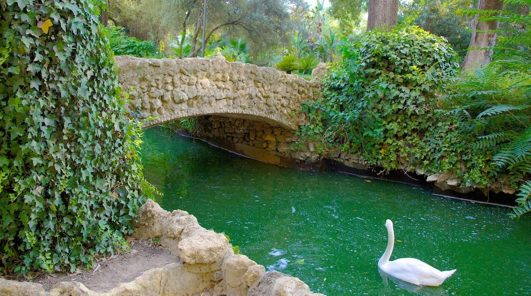 Parque de María Luisa que incluye un puente, un río o arroyo y un parque