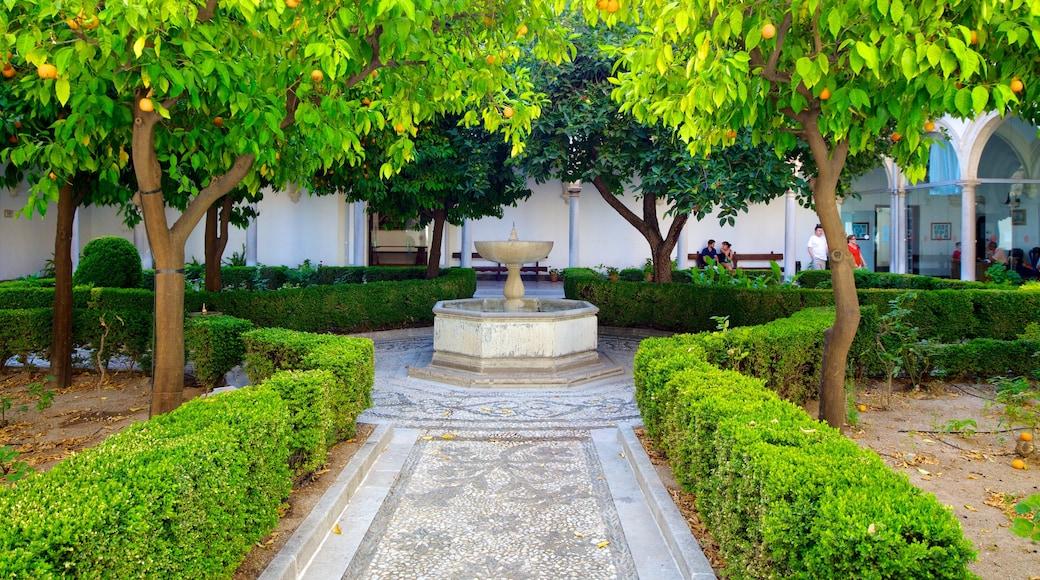Granada Charterhouse showing a garden and a fountain