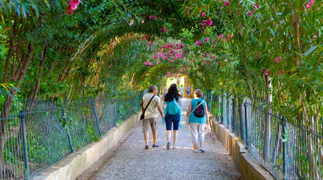 Generalife showing a park as well as a small group of people