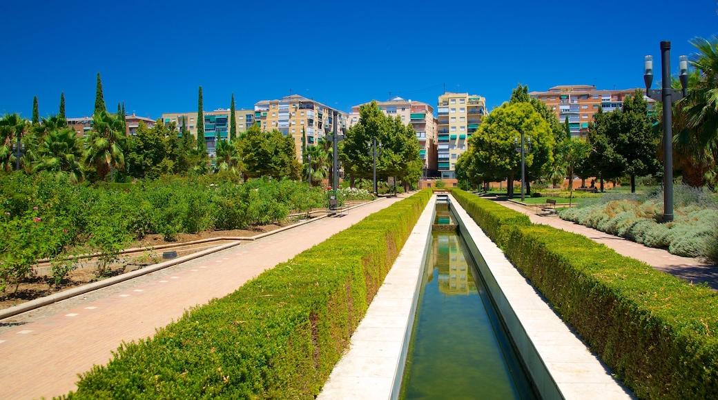 Parque Garcia Lorca featuring a city, a park and a pond