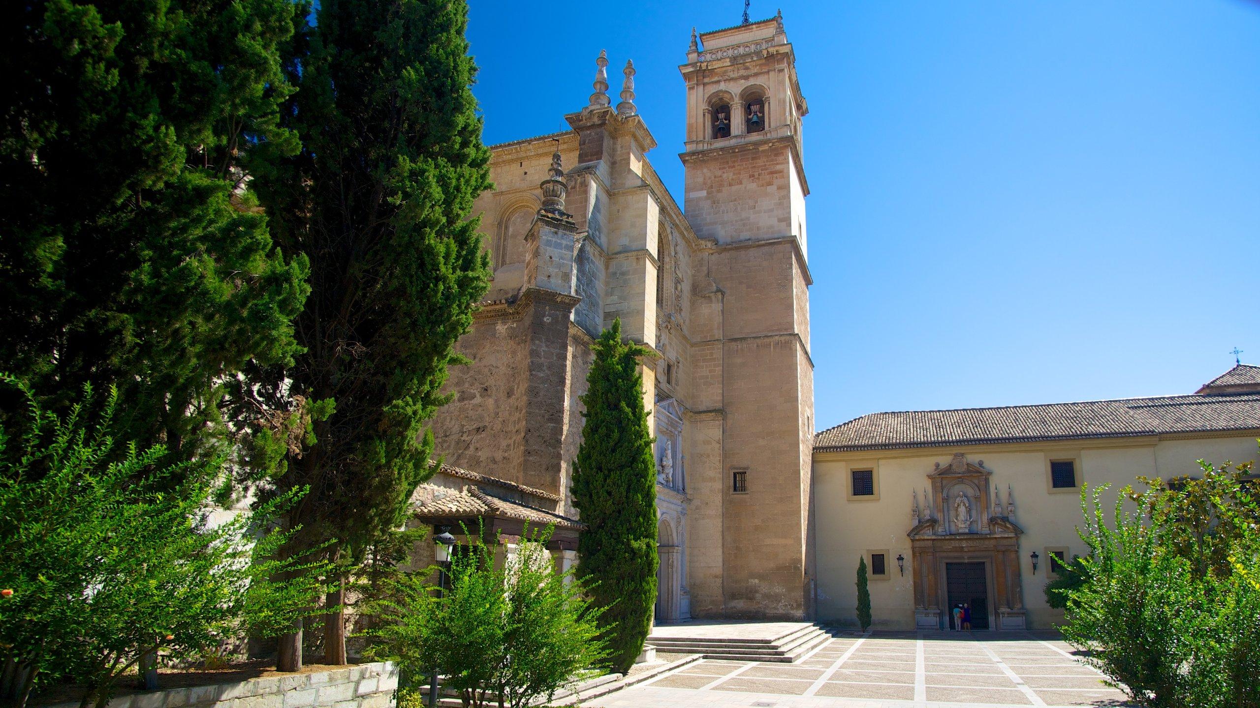 Vega de Granada, Andalusia, Spain