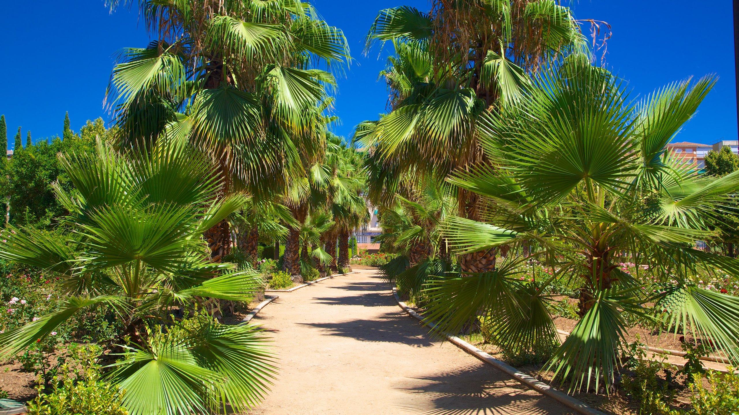 Camino de Ronda, Granada, Andalusien, Spanien