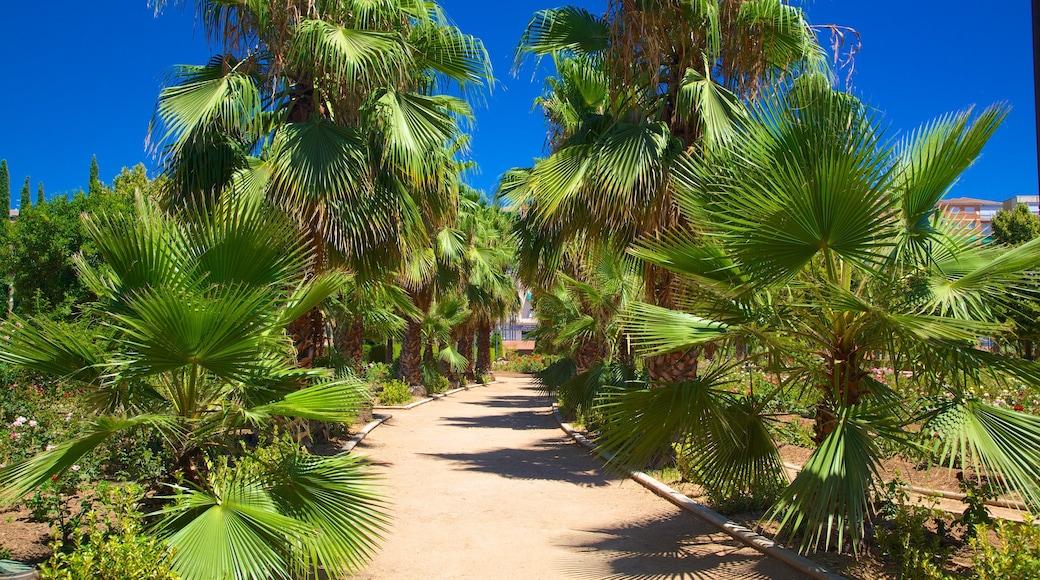 Parque Garcia Lorca showing a garden