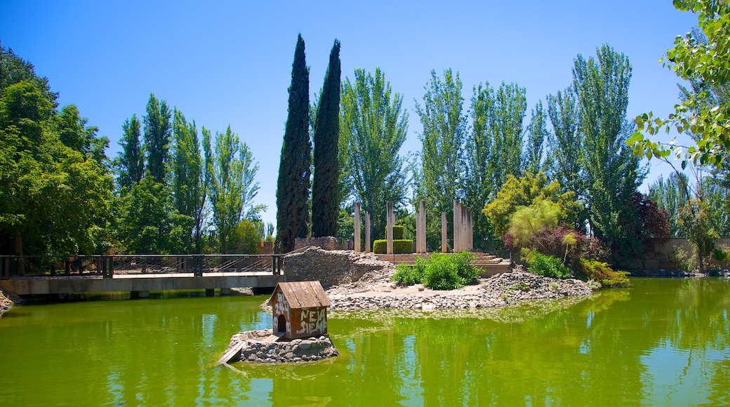 Parque Garcia Lorca showing a garden and a pond