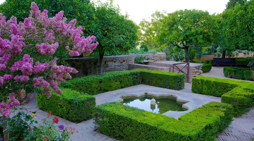 Generalife featuring a fountain, château or palace and flowers
