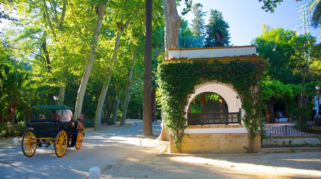 Parque de María Luisa mostrando un parque