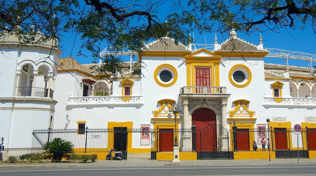 Plaza de Toros de la Real Maestranza presenterar historisk arkitektur