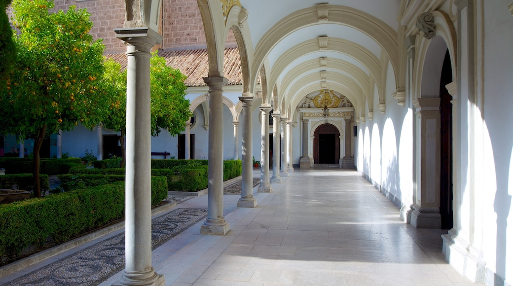 Granada Charterhouse which includes interior views and a church or cathedral