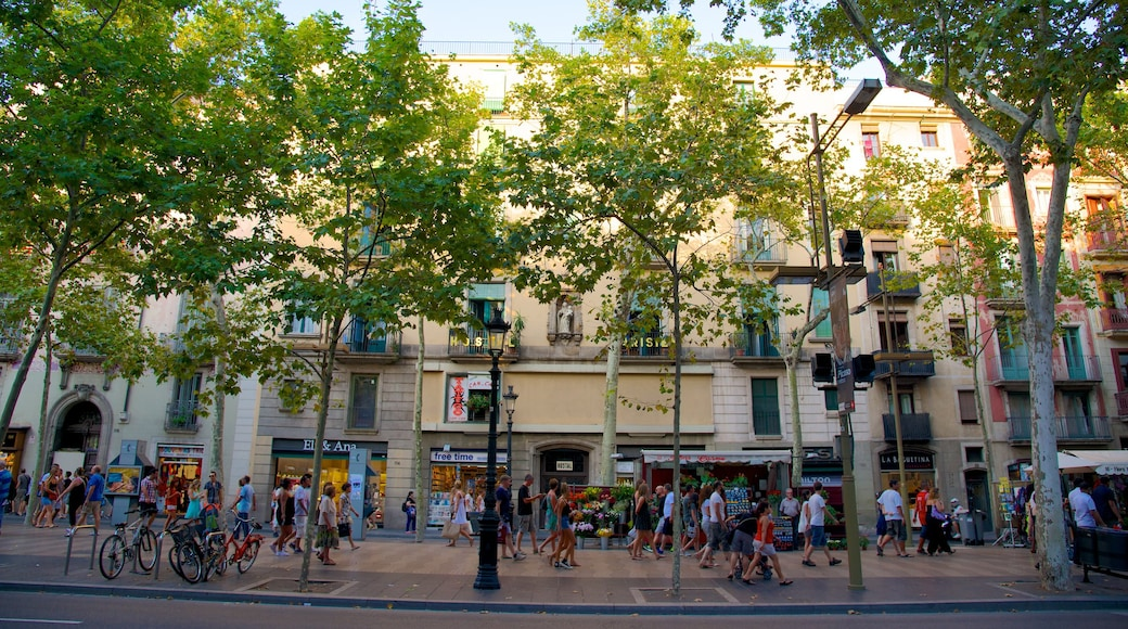Las Ramblas showing a city and street scenes as well as a large group of people