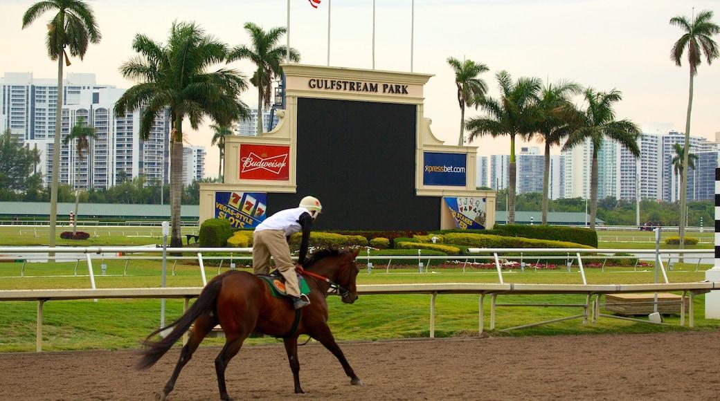 Golfstrømparken som inkluderer hesteridning og skilt i tillegg til en mann