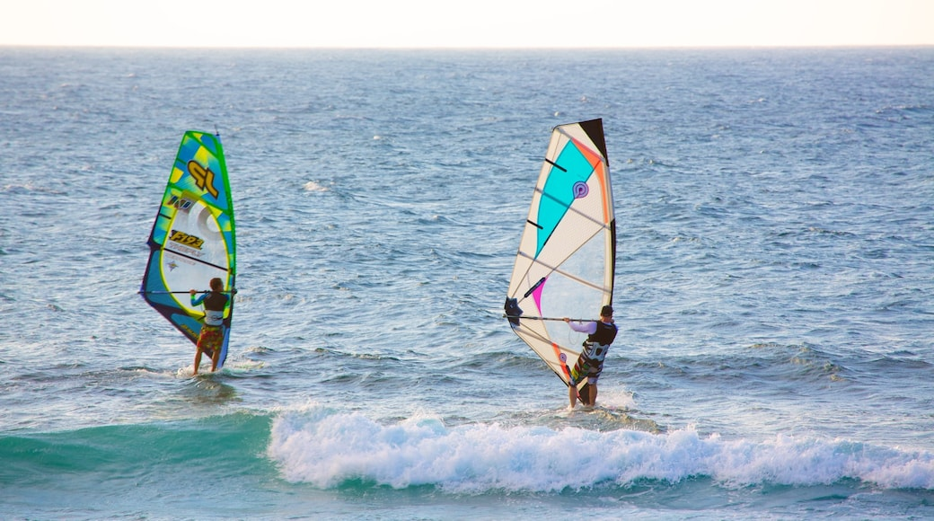 Hookipa Beach Park showing windsurfing and waves